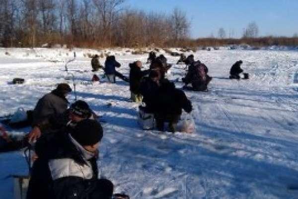 Ловля сороги зимой — особенности поимки, тактика