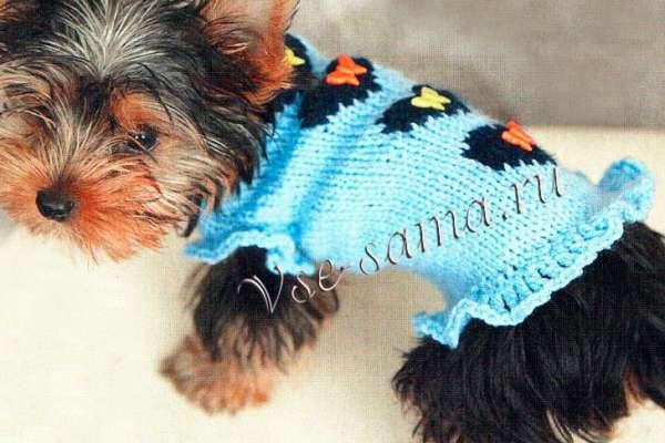 Выкройки и схемы вязанной одежды для маленьких собак