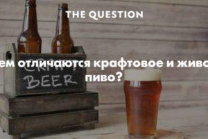 Чем отличаются крафтовое и живое пиво?