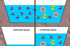 Атмосферное давление и соль — свидетельства катастрофы