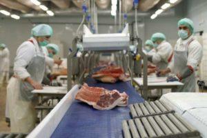 Санитарные правила для предприятий мясной промышленности: описание разделов