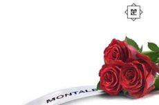 Большущий обзор парфюмерии Montale от начинающего парфманьяка. Часть 1