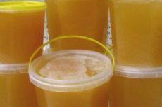 10 советов как правильно хранить мёд дома и в чём содержать