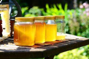 Как проверить мёд натуральный или нет в домашних условиях
