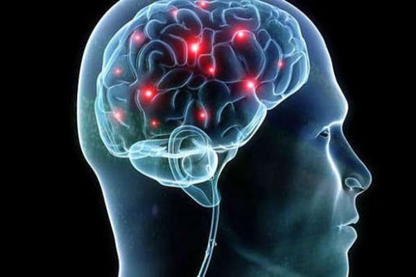 Биологи впервые увидели, как рождаются новые клетки мозга