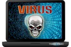 Компьютерные вирусы. Типы, виды, пути заражения
