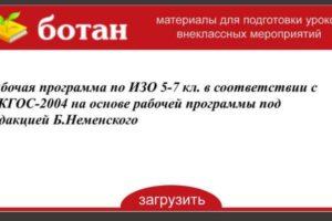 Рабочая программа по ИЗО 5-7 кл. В соответствии с ФКГОС-2004 на основе рабочей программы под редакцией Б. Неменского