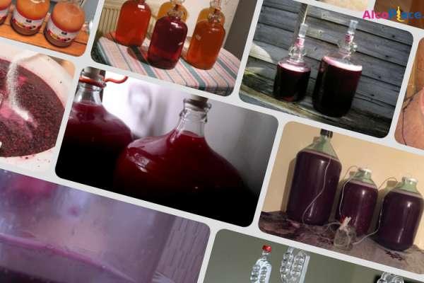 Виноградное вино плохо бродит после добавления сахара