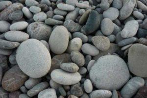 Морской камень: название, описание. Виды морских камней. Поделки из морского камня своими руками (фото)