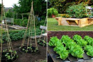 Интересные способы дизайна грядок и клумб, которые стоит взять на вооружение всем садоводам