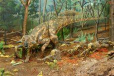 История динозавров. Возникновение динозавров