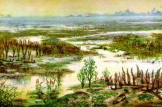 Теории происхождения жизни на Земле