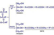 Реакция гидролиза: уравнения, продукт гидролиза
