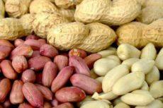 Вред и польза арахиса для женщин и мужчин, калорийность