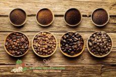 Сорта кофе: рейтинг торговых марок, какой самый лучше в мире