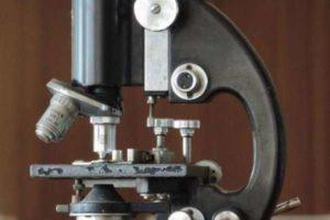 История открытия увеличительных приборов. Устройство увеличительных приборов