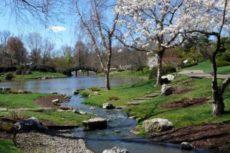 Явления природы: весенние, летние, осенние, зимние. Окружающий мир 2 класс