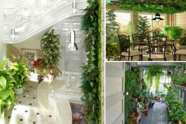 Отличные идеи оформления зимнего сада, каждая из которых по-своему неповторима
