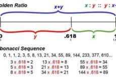 Числа Фибоначчи и золотое сечение: взаимосвязь