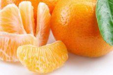Мандарины: виды, вкус, польза, тонкости выбора