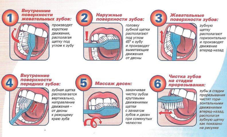 Как чистить зубы правильно