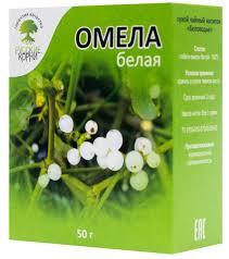 Омела белая: полезные свойства, рецепты народной медицины