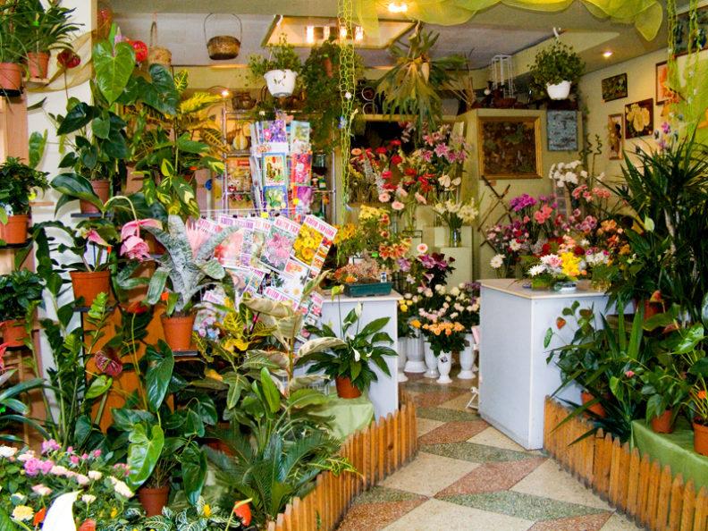 Торгово-цветочное оборудование